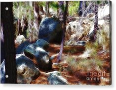 Incinerator Ridge Fractal Acrylic Print