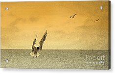 Incoming Acrylic Print by Linsey Williams