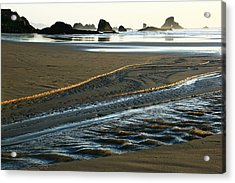 Indian Gold Stream Acrylic Print by Steven A Bash