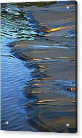 Indian Golden Blue Acrylic Print by Steven A Bash