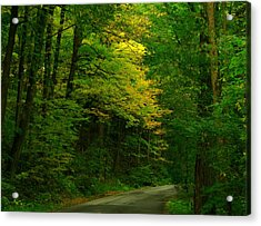 Indiana Road Acrylic Print by Joyce Kimble Smith
