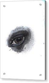 Acrylic Print featuring the photograph Indys Eye by Judy Hall-Folde