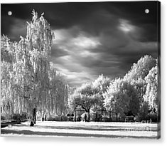 Infra Red Park Acrylic Print