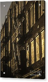 Inner City Fire Escapes Acrylic Print by Will & Deni McIntyre