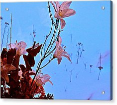 Inside Out Floral Design Acrylic Print by Randy Rosenberger