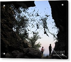 Inside The Bat Cave Acrylic Print by Mark Robbins