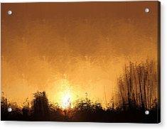 Insomnia 1 Acrylic Print
