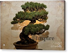 Acrylic Print featuring the photograph Inspire by Tamera James