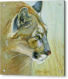 Acrylic Print featuring the painting Intense Cougar by Bonnie Rinier
