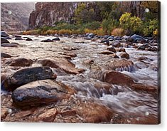 Intimate Waters On The Salt River Acrylic Print by Dave Dilli