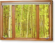 Into The Aspens Window View Acrylic Print by James BO  Insogna