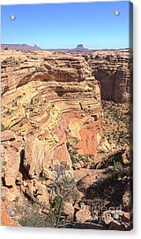 Into The Maze Acrylic Print by Scotts Scapes