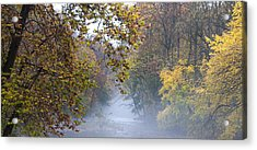 Into The Mist Acrylic Print by Bill Cannon