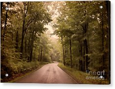 Into The Mists Acrylic Print by Lois Bryan