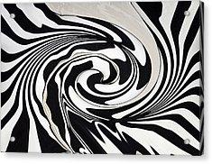 Intoxicated Zebra..... Acrylic Print by Tanya Tanski