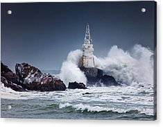 Invincible Acrylic Print by Evgeni Dinev