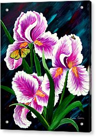 Iris And Insects Acrylic Print