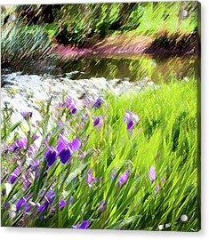 Iris And Water Acrylic Print by Linde Townsend