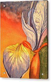 Acrylic Print featuring the painting Iris Moody by Teresa Beyer