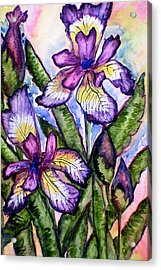 Iris Acrylic Print by Nadiya Kochura