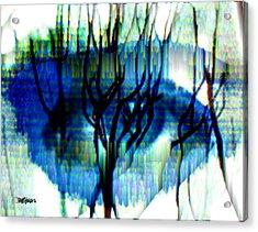 Iris Acrylic Print by Seth Weaver