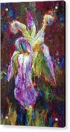 Iris Vrubel Acrylic Print by Petro Bevza