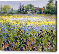 Irises And Two Fir Trees Acrylic Print by Timothy Easton