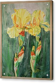 Acrylic Print featuring the painting Irises II by Teresa Beyer