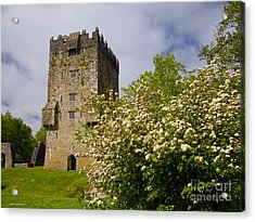 Irish Travel Landscape Aughnanure Castle Ireland Acrylic Print