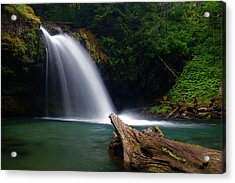 Iron Creek Falls 3 Acrylic Print by Marcus Angeline
