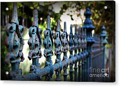 Iron Fence Acrylic Print by Perry Webster
