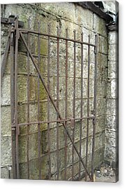 Acrylic Print featuring the photograph Iron Gate by Christophe Ennis