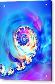 Irridescence Acrylic Print by Sharon Lisa Clarke