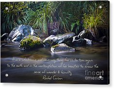 It Is A Wholesome....... Acrylic Print