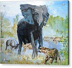 It's A Jungle Acrylic Print by Judy Kay