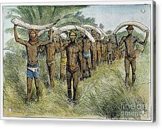 Ivory Trade, C1875 Acrylic Print by Granger