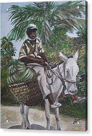 Jamaican Donkey Power Acrylic Print by Kim Selig