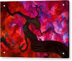 Japanese Maple Branch Acrylic Print