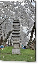 Japanese Pagoda At The Cherry Blossoms Washington Dc Acrylic Print by Metro DC Photography