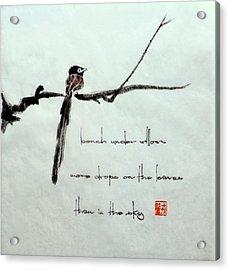 Japanese Paradise Flycatcher 1 Acrylic Print