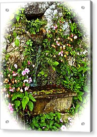 Japanese Water Feature Acrylic Print