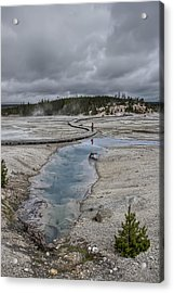 Japanese Woman With Umbrella At Norris Geyser Basin Acrylic Print by Daniel Hagerman