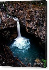 Jasper - Beauty Creek Falls Acrylic Print by Terry Elniski