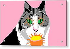Acrylic Print featuring the painting Jazzy Get Well by Anita Dale Livaditis