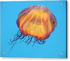 Acrylic Print featuring the photograph Jellyfish by Wendy McKennon
