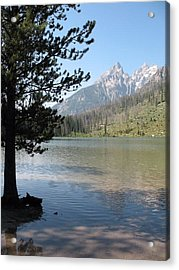 Acrylic Print featuring the photograph Jenny Lake And The Beauty Of The Grand Tetons by Shawn Hughes