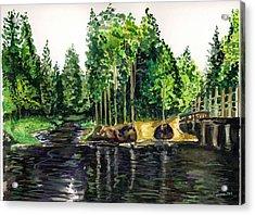 Jersey Pines Acrylic Print