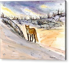 Acrylic Print featuring the painting Jersey Shore Fox by Clara Sue Beym