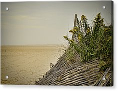 Jersey Shore Acrylic Print by Heather Applegate
