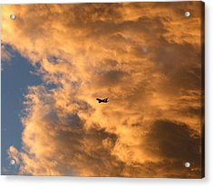 Jet Silhouette Acrylic Print by Will Borden